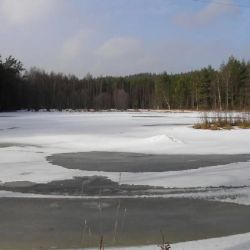 Het meer in de achtertuin in de winter