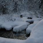 De achtertuin in de winter